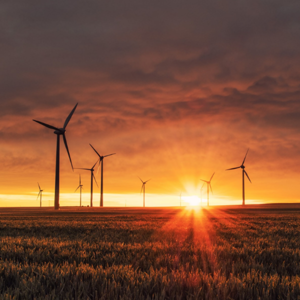 Concern for sustainability gains strength in the context of energy